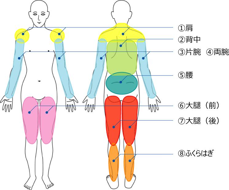 筋膜リリース_人体図
